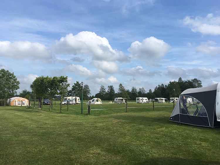 kampeerveld met paardenwei camping de stjelp in oudega