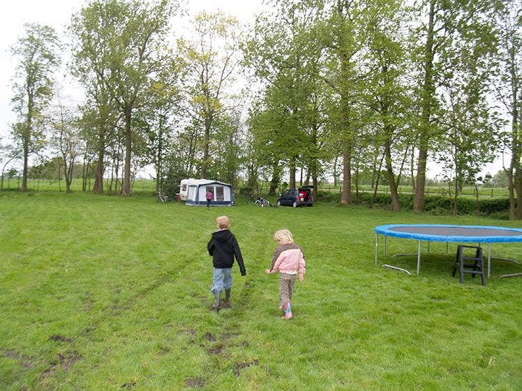 kamperen op het veld voor de boerderij van camping de koaipleats
