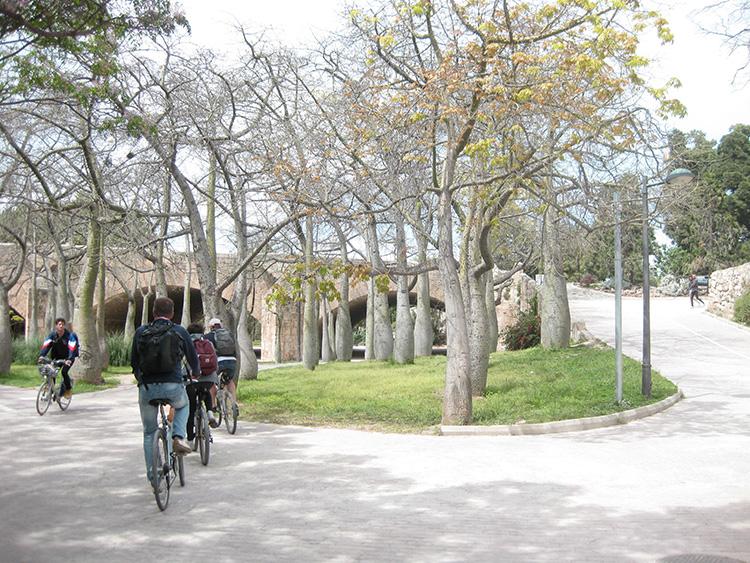 fietsen door valencia